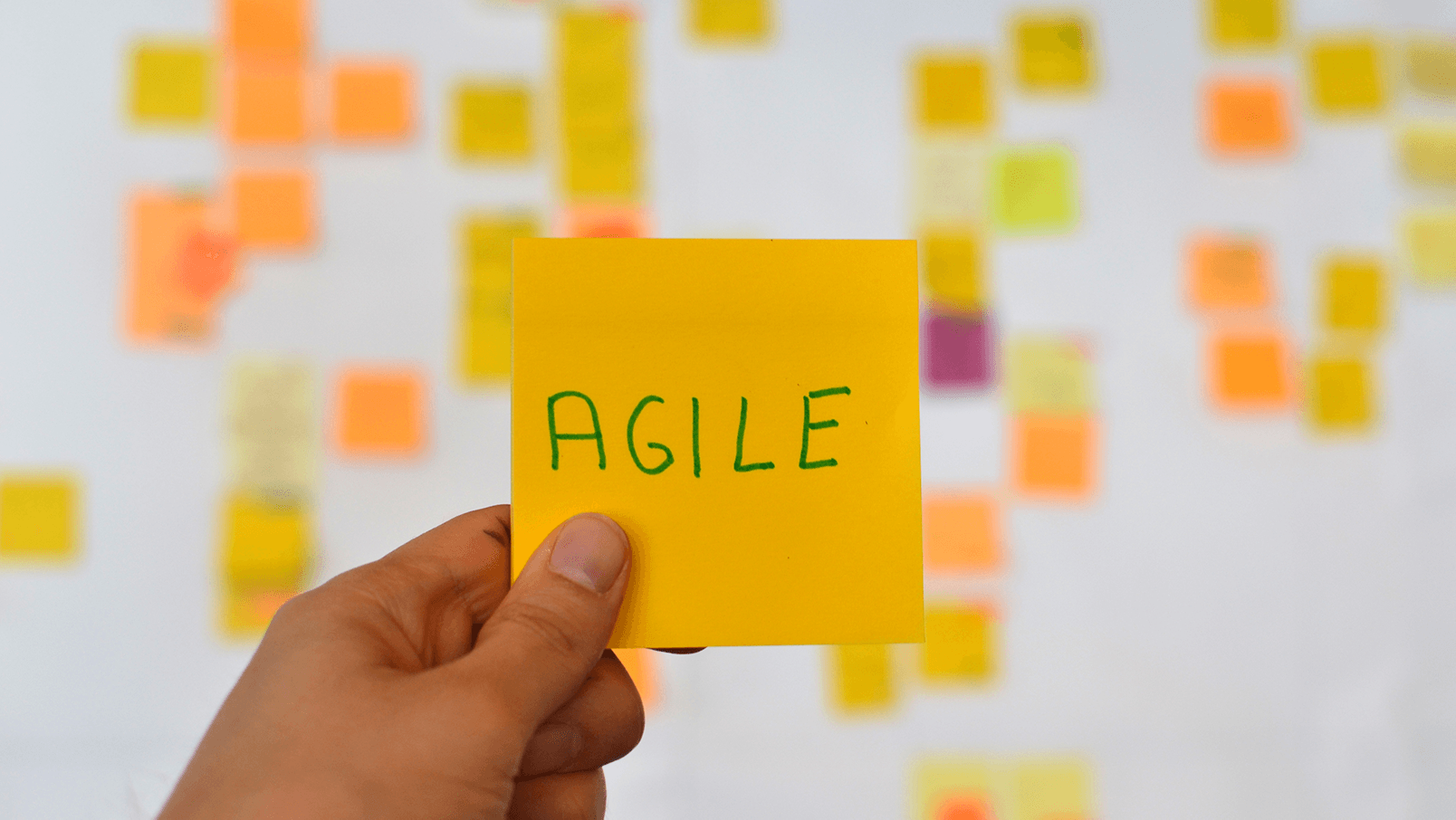 Agility in the Supply Chain